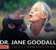 jane-goodall-teaches-conservation